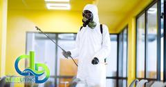C4A1B041-infectant_spray3.jpg