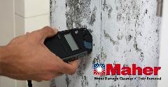 F27A22E6-Mold_Damage_Remediation-16.jpg