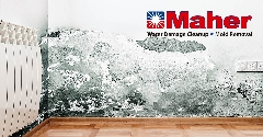 F24A8A22-Mold_Damage_Remediation-09.jpg