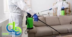 C4A3A6AE-infectant_spray8.jpg