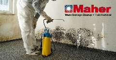 F24AE717-Mold_Damage_Remediation-12.jpg