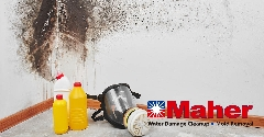 F24B8B9E-Mold_Damage_Remediation-17.jpg