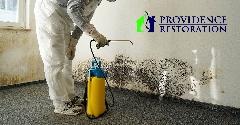 A4F7906F-Mold_Damage_Remediation-12.jpg