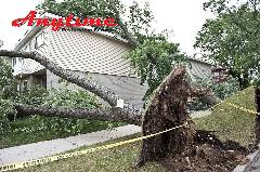 A2A67A39-Storm_Natural_Disaster_Cleanup_Restoration-09.jpg