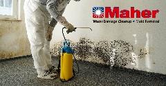 F098732C-Mold_Damage_Remediation-12.jpg