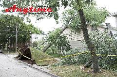 A2A62855-Storm_Natural_Disaster_Cleanup_Restoration-08.jpg