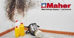 F27A8110-Mold_Damage_Remediation-17.jpg
